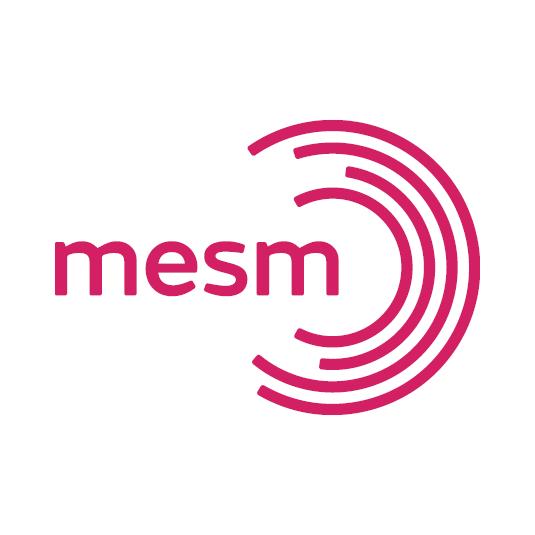 MESM logo